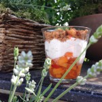 Holunder-Aprikosen-Creme im Glas