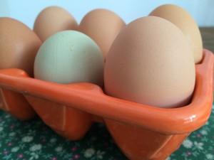 glückliche Eier
