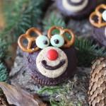IMG_2708_lebkuchen-muffins